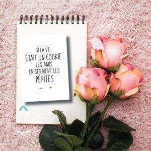 Carte postale – Si la vie était un cookie, les amis en seraient les pépites