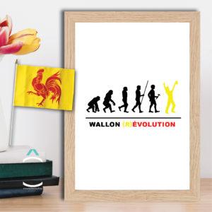 Cadre – Wallonie (r)évolution